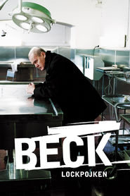 Beck TV series cast and synopsis.