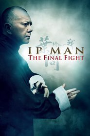 Ip Man: The Final Fight with Jordan Chan.