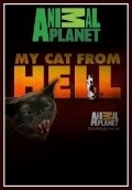 My Cat from Hell TV series cast and synopsis.