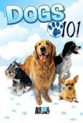 Dogs 101 TV series cast and synopsis.