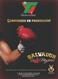 Salvador de Mujeres TV series cast and synopsis.