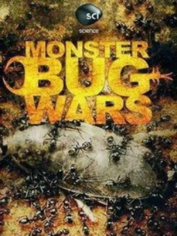 Monster Bug Wars! TV series cast and synopsis.