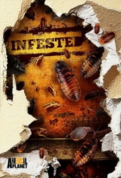 Infested! TV series cast and synopsis.
