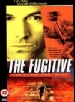 The Fugitive TV series cast and synopsis.